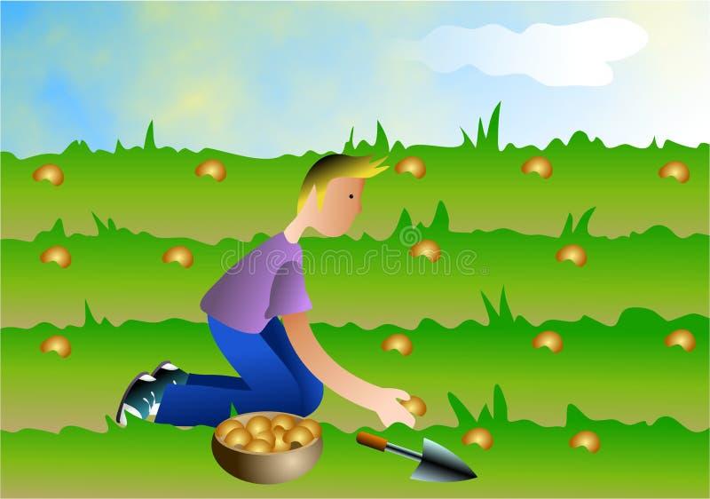 засевать семян иллюстрация вектора