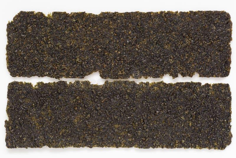 Засоритель моря на изолированной предпосылке стоковые изображения