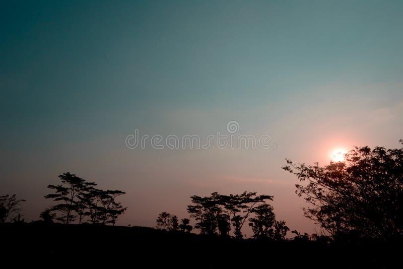 Застенчивое застенчивое солнце стоковое фото rf
