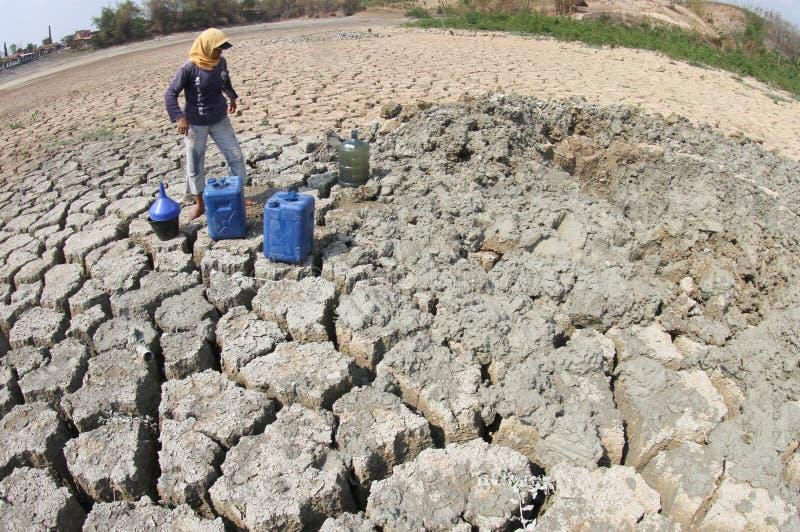 Засуха в Индонезии стоковые фото