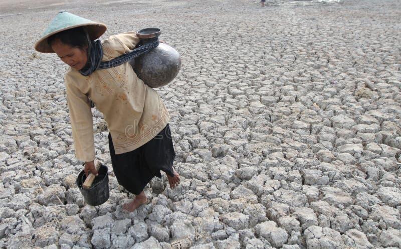 Засуха в Индонезии стоковая фотография
