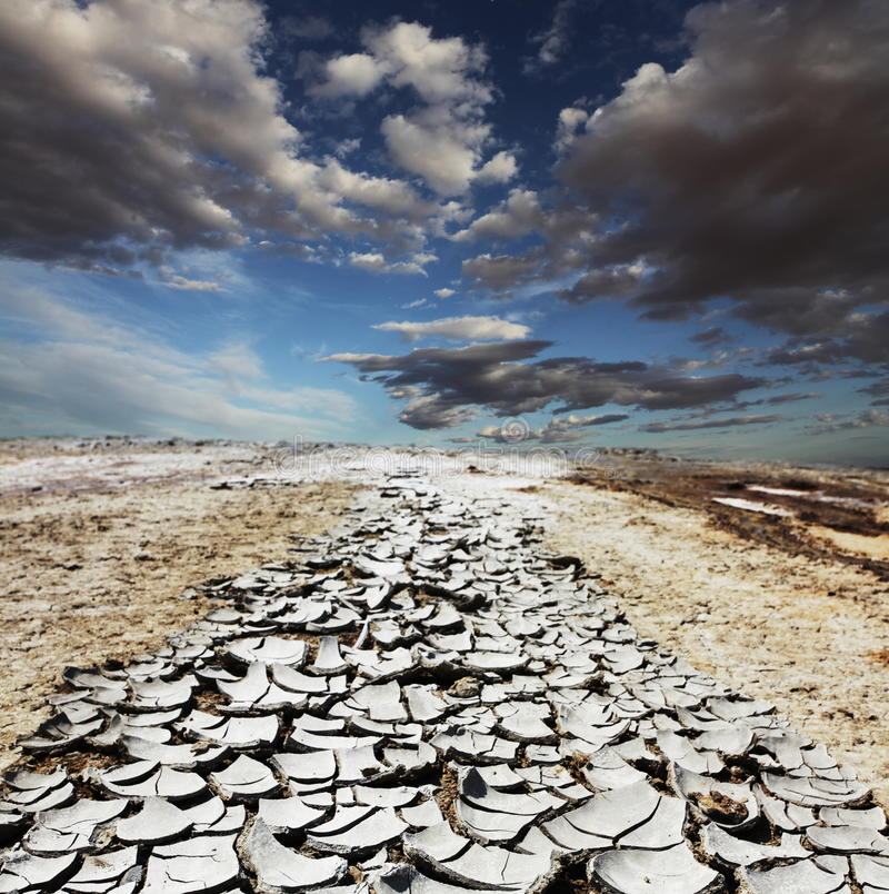 засуха пустыни стоковые изображения rf