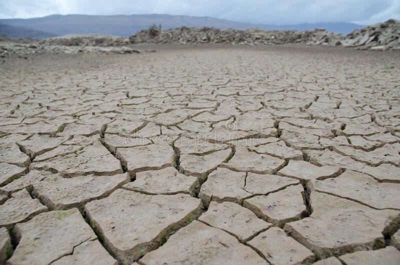 засуха стоковые фото