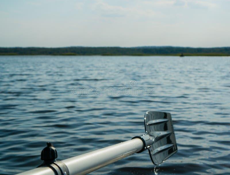 Затвор против ландшафта реки утра, гребя весло, Shal стоковое фото rf