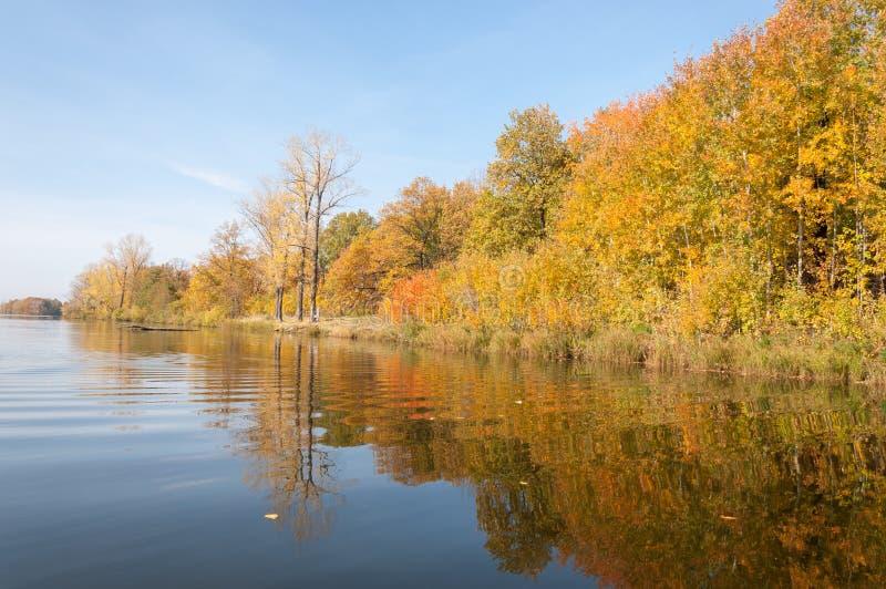 Затишье осени на отражении озера деревьев в воде стоковые фотографии rf