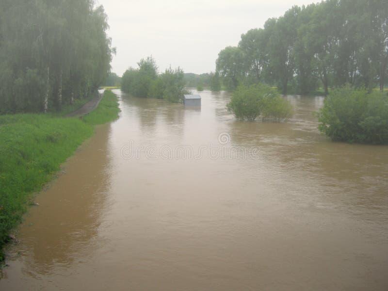 Затопленное река после потоков весны в Центральной Европе стоковые фото