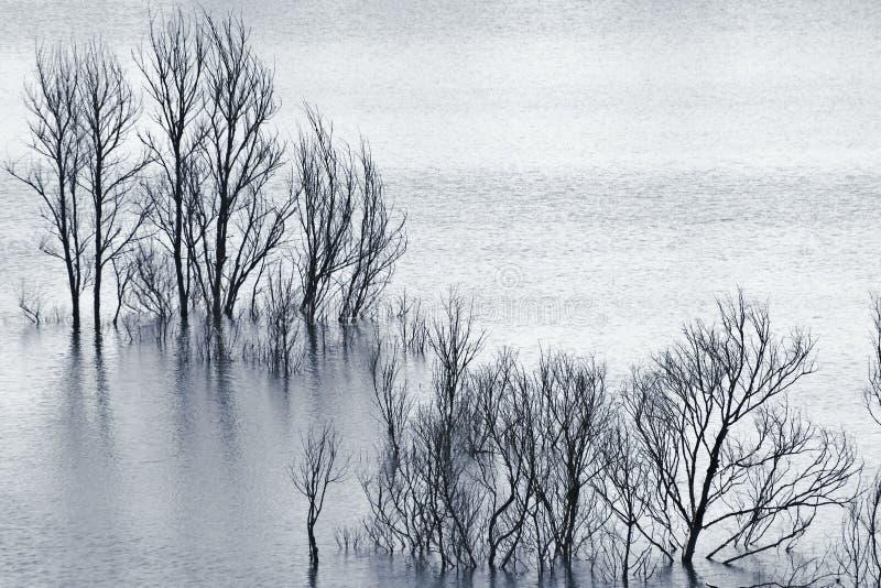 Затопленные валы стоковая фотография