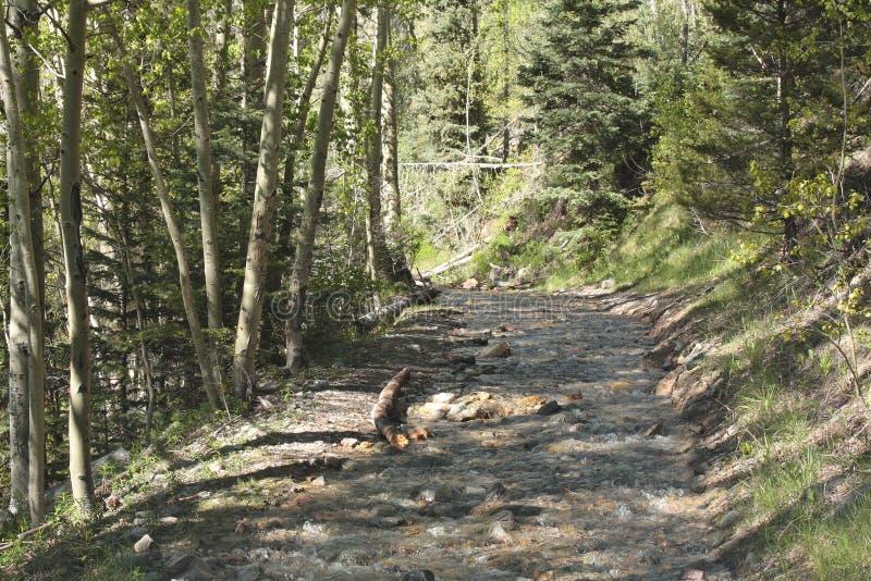 Затопленная дорога горы стоковое изображение rf