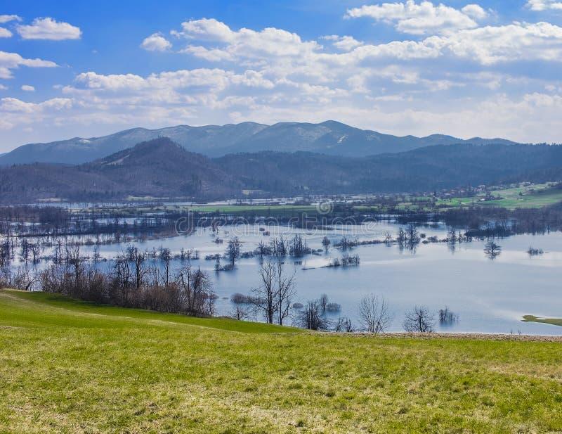 затопленный ландшафт стоковые изображения rf