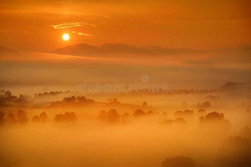 Захватывающее lansdcape утра малой баварской деревни предусматриванной в тумане Сценарный взгляд баварских Альпов на восходе солн стоковые фотографии rf