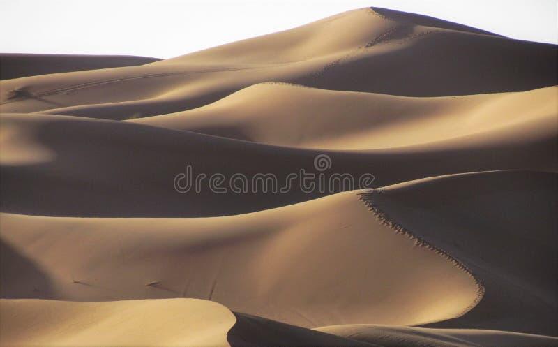 Захватывающие виды высоких и удивительных песчанных дюн в пустыне Сахары стоковое изображение