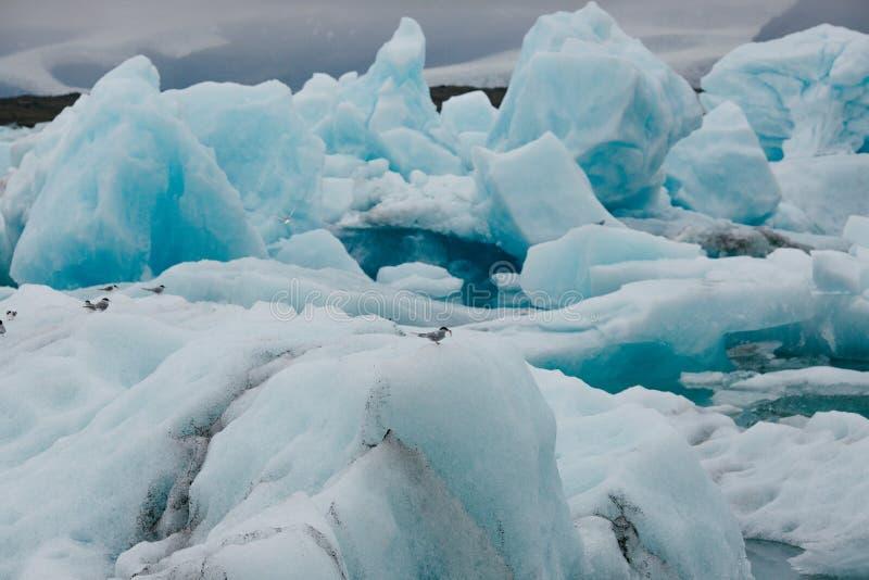 захватывающий вид белых и голубых айсбергов стоковое фото rf