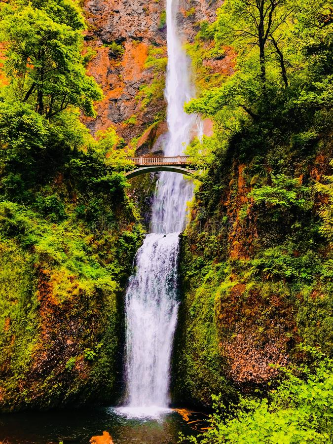 Захватывающий, красивый водопад стоковые изображения rf