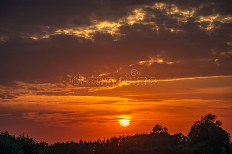 Заходящее солнце за деревьями и темными облаками стоковые фотографии rf