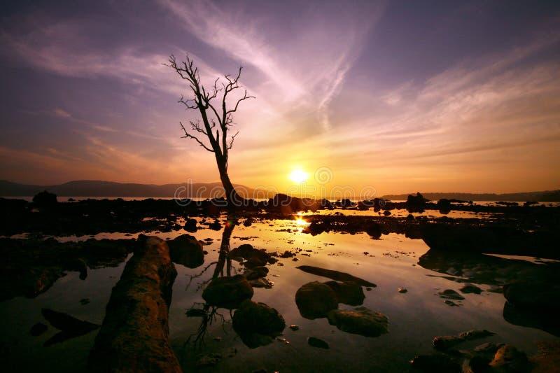 заход солнца Азии blair гаван сценарный стоковые изображения rf