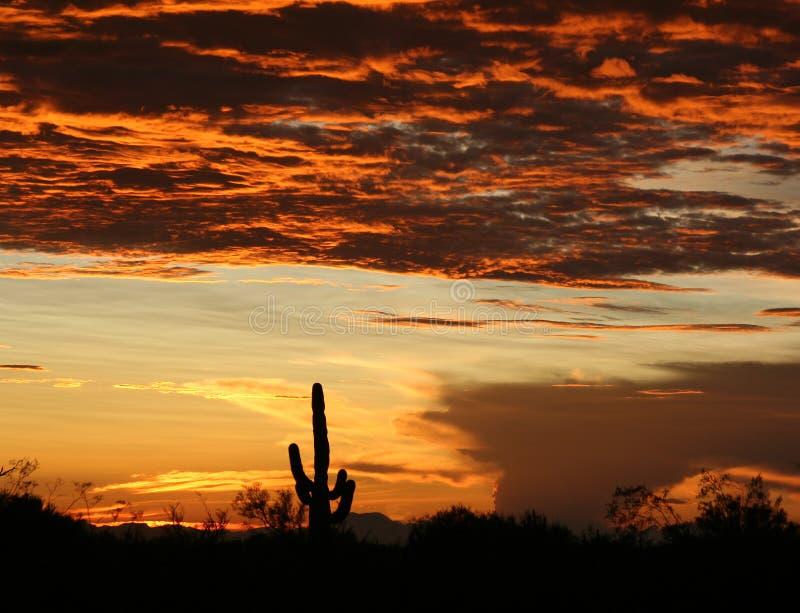заход солнца Аризоны стоковое фото rf