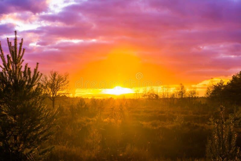 Заход солнца в ландшафте с розовыми nacreous облаками, редком явлении вересковой пустоши погоды зимы стоковое изображение