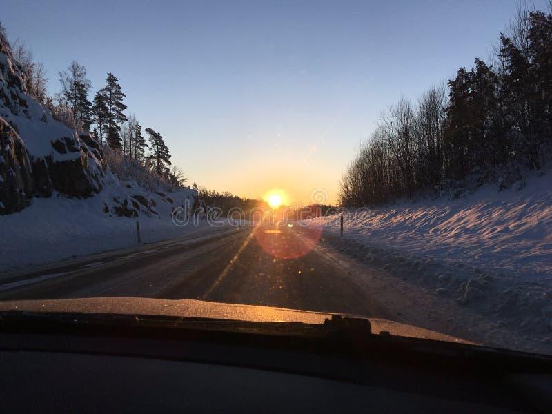 Заход солнца в шведской зиме стоковые фотографии rf