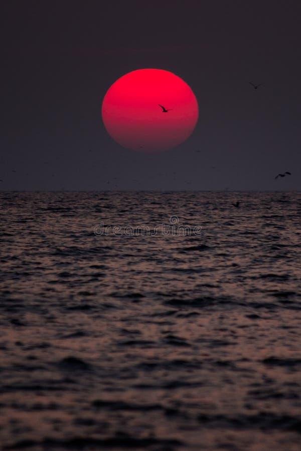 Заход солнца в Goa стоковое фото rf