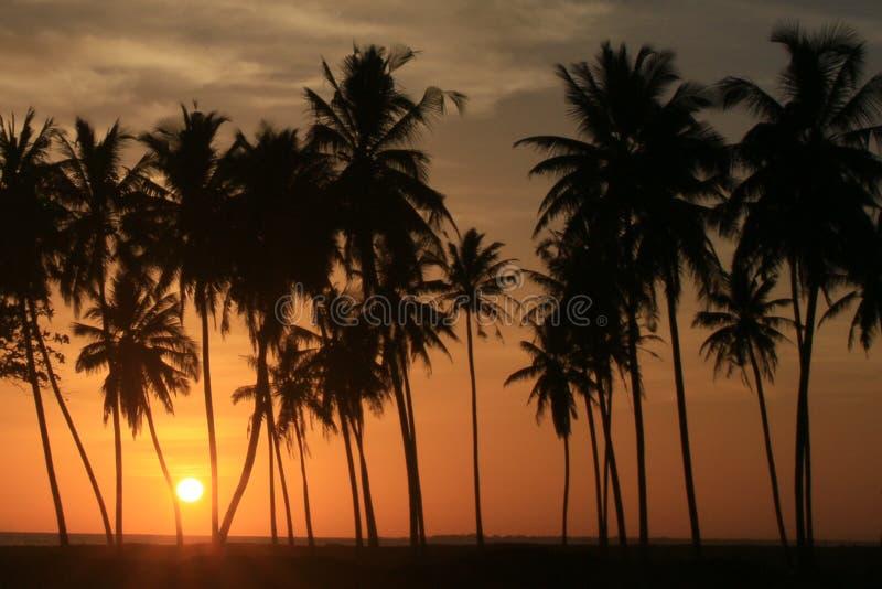 Заход солнца в Meulaboh, Индонезии стоковые фото