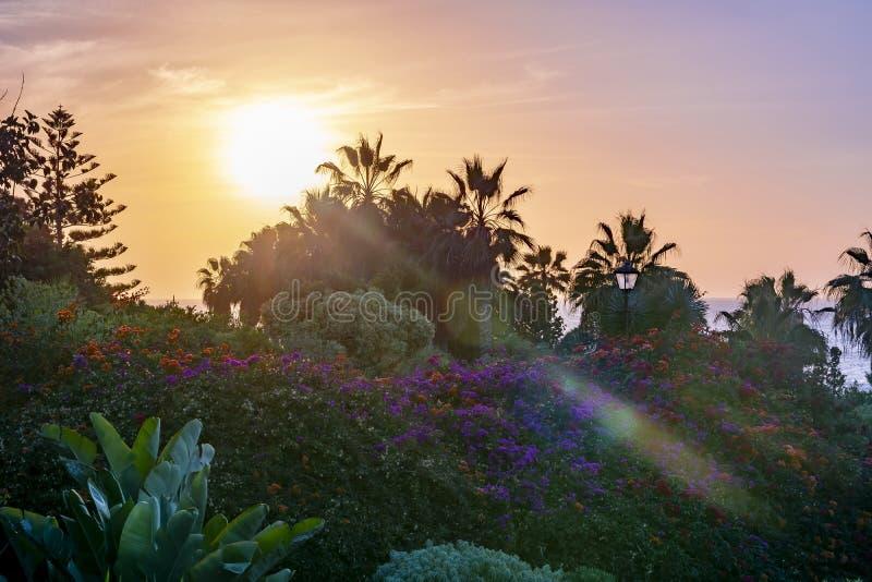 Заход солнца в Puerto de Ла Cruz, Канарских островах, Тенерифе, Испании стоковые изображения