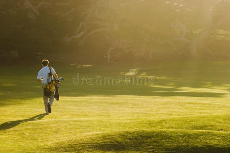заход солнца гольфа стоковое фото rf