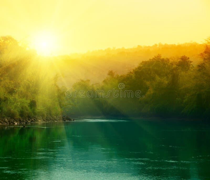 заход солнца джунглей стоковые фото