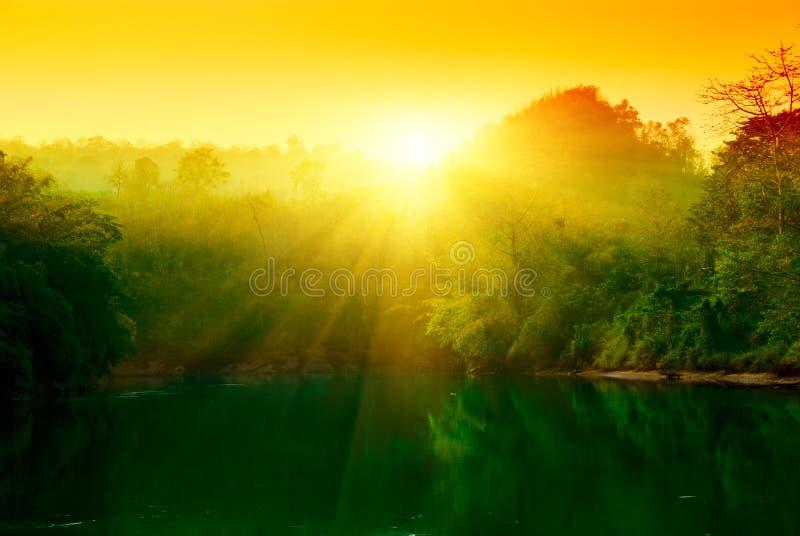 заход солнца джунглей стоковые изображения rf