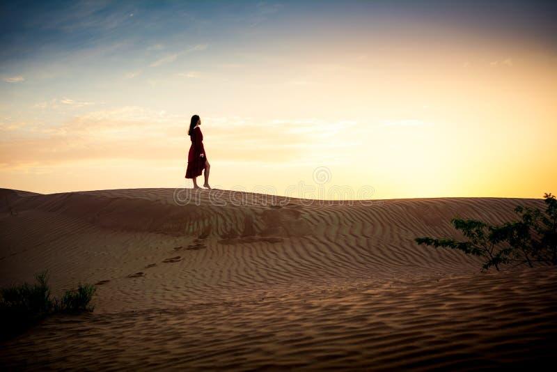 Заход солнца женщины наблюдая в силуэте пустыни стоковые фото