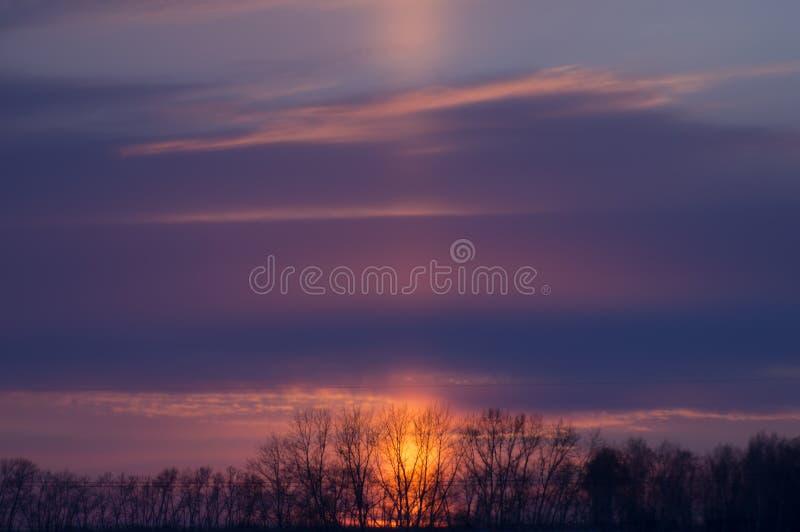 Заход солнца за поясом леса стоковое фото