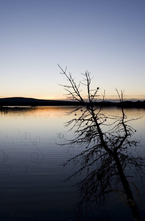 заход солнца Лапландии стоковое фото rf