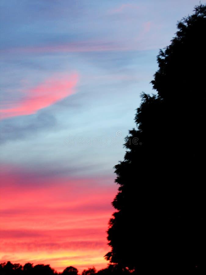 заход солнца лета стоковые изображения rf
