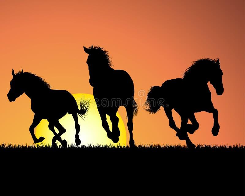 заход солнца лошади предпосылки иллюстрация штока
