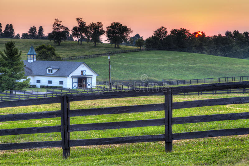 заход солнца лошади фермы стоковое фото