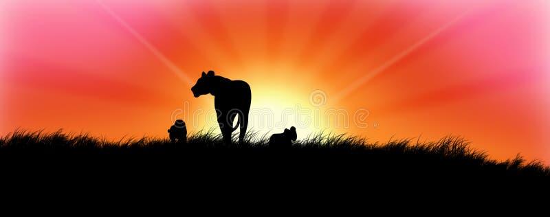заход солнца львов иллюстрация вектора
