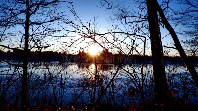 Заход солнца между ветвями стоковые фото