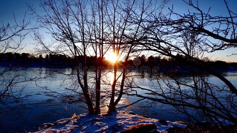Заход солнца между ветвями стоковые изображения