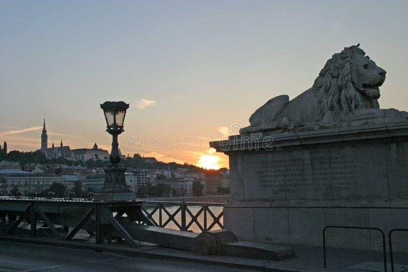 заход солнца моста цепной стоковая фотография rf