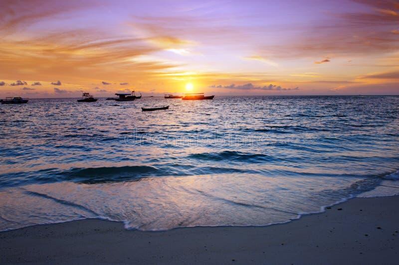 Заход солнца над гаванью стоковая фотография rf