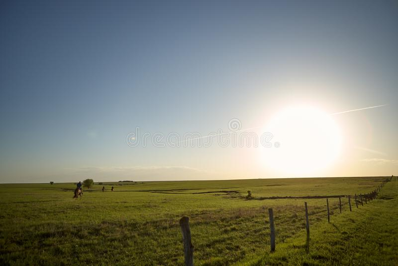 Заход солнца над зеленым ранчо с ковбоями стоковое фото rf