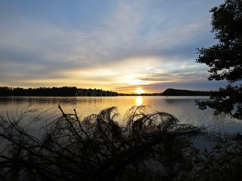 Заход солнца над красивым озером увиденным через деревья с облачным небом внутри backgroundFallen дерево на заходе солнца над кра стоковая фотография