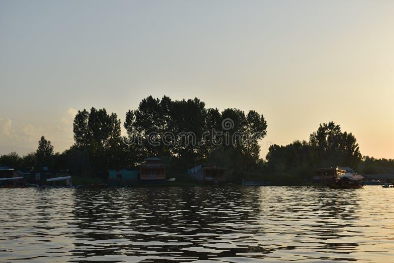 Заход солнца над озером и деревьями в озере Dal, Сринагаре, Джамму и Кашмир, Индии стоковое изображение