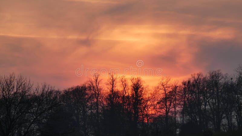 Заход солнца над парком Hylands, янтарное зарево привлекая любовников стоковые изображения