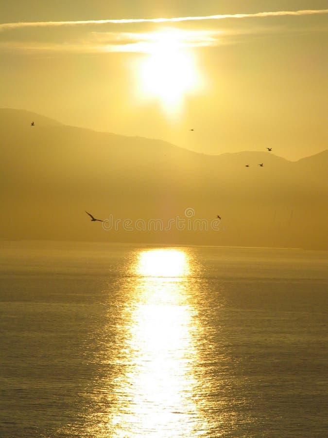 Заход солнца над Algeciras стоковое фото rf