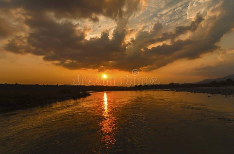 Заход солнца на горизонте в лесе стоковые фотографии rf
