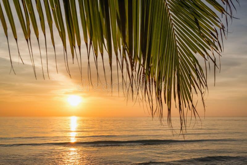 Заход солнца на красивом тропическом пляже в Таиланде стоковое изображение