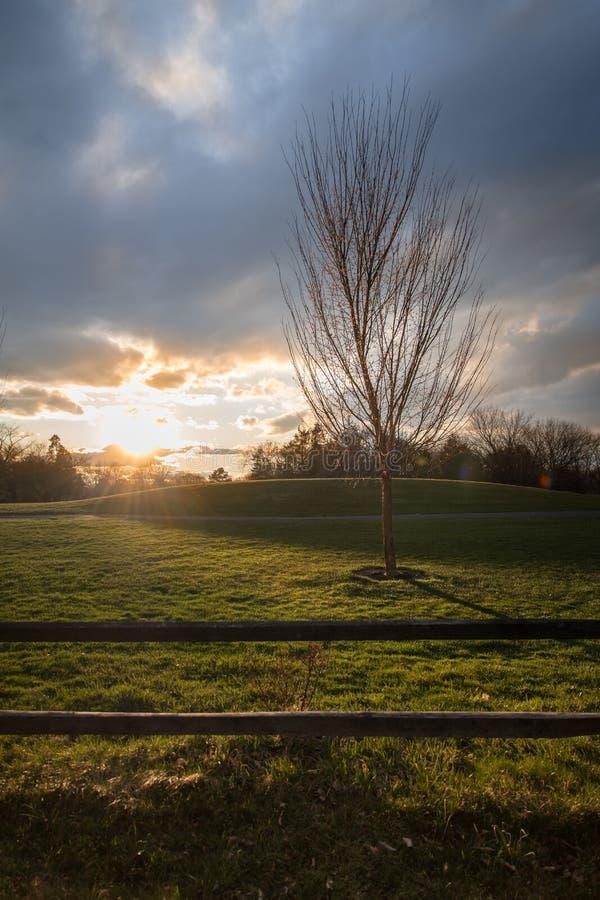 Заход солнца на курсе золота стоковая фотография