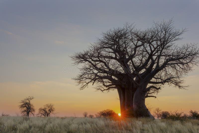 Download Заход солнца на месте для лагеря Baines Стоковое Фото - изображение: 104863464