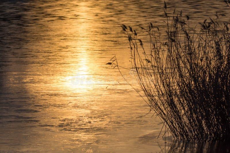 Заход солнца на озере с красивыми отражениями воды стоковая фотография