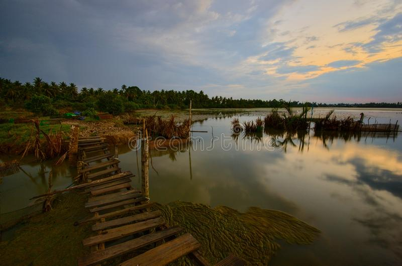 Заход солнца на озере lukut Tok, pengkalan chepa Малайзии стоковые фото